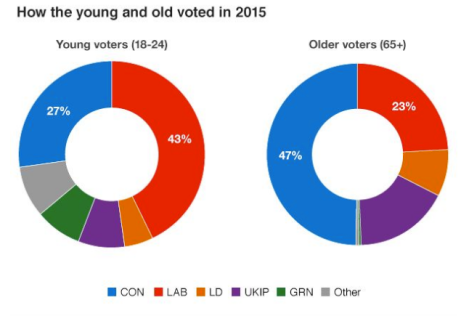 Pie Charts Showing How the Young and Old Voted